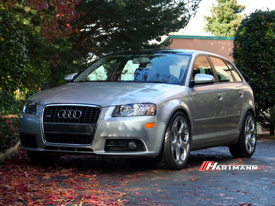 Audi 8p a3 hartmann g5 gs 19 kw2 hwm